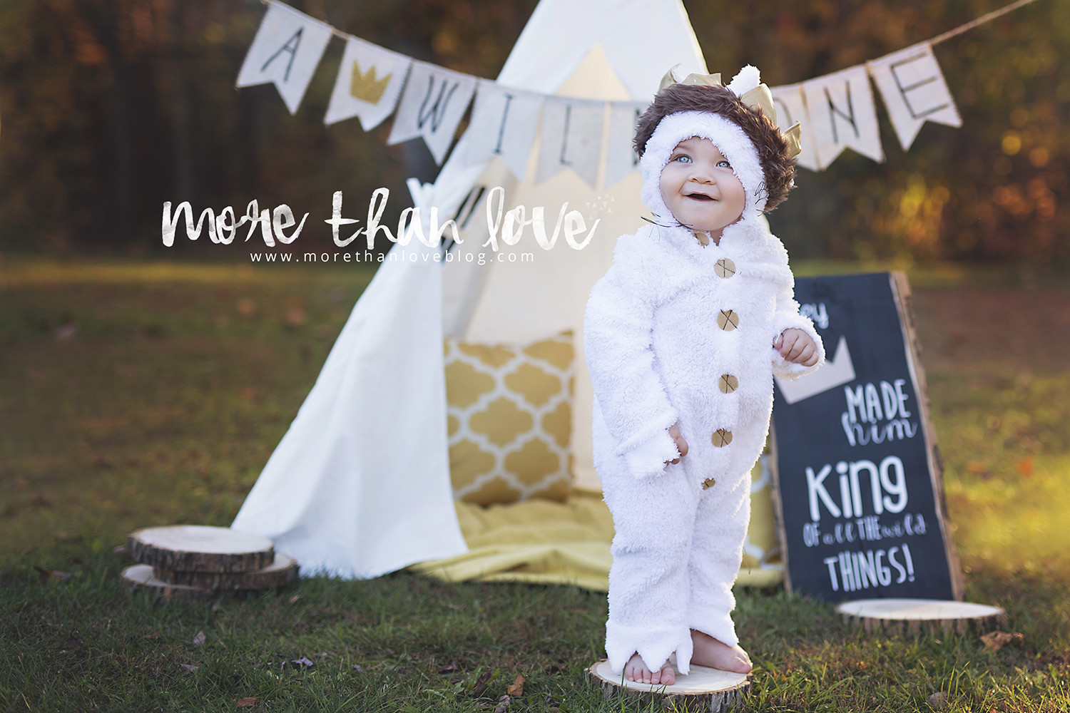 Luca's Where the Wild Things Are Inspired 1st Birthday Shoot