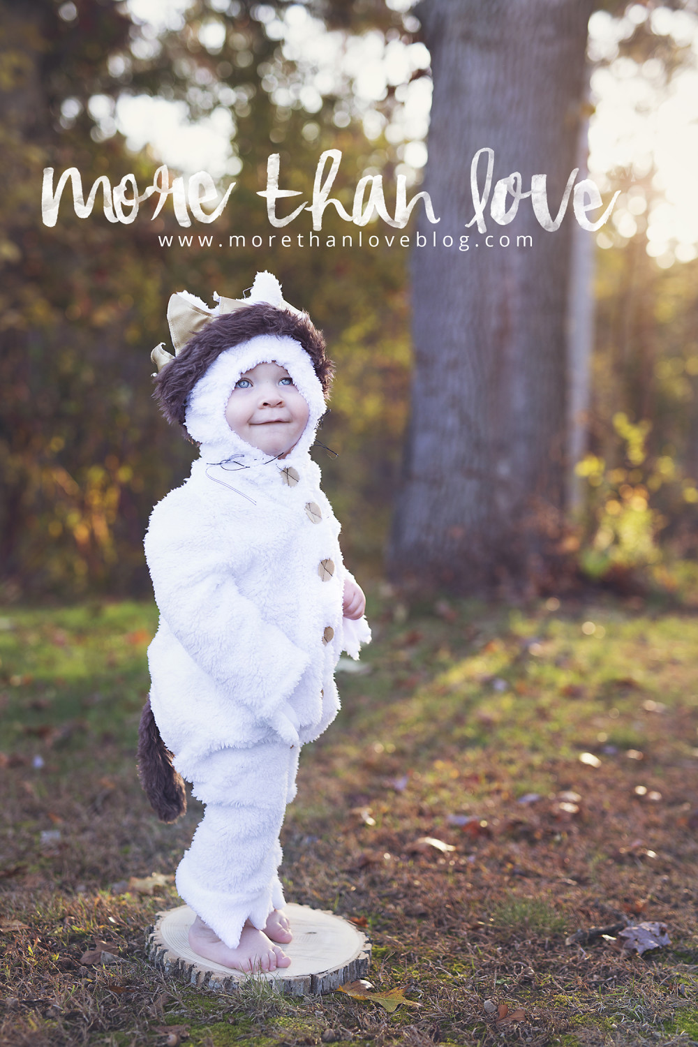 Luca S Where The Wild Things Are Inspired 1st Birthday Shoot